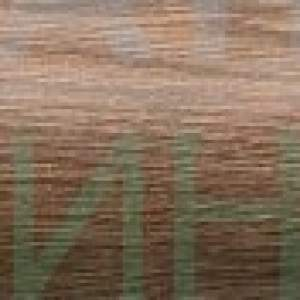 Amazonia 2 braz-фриз /4,8х36 см./-лв/бр