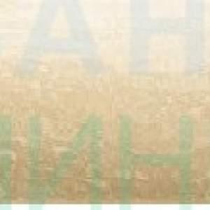 Amazonia 3 beige фриз /4,8х36 см/ – лв/бр